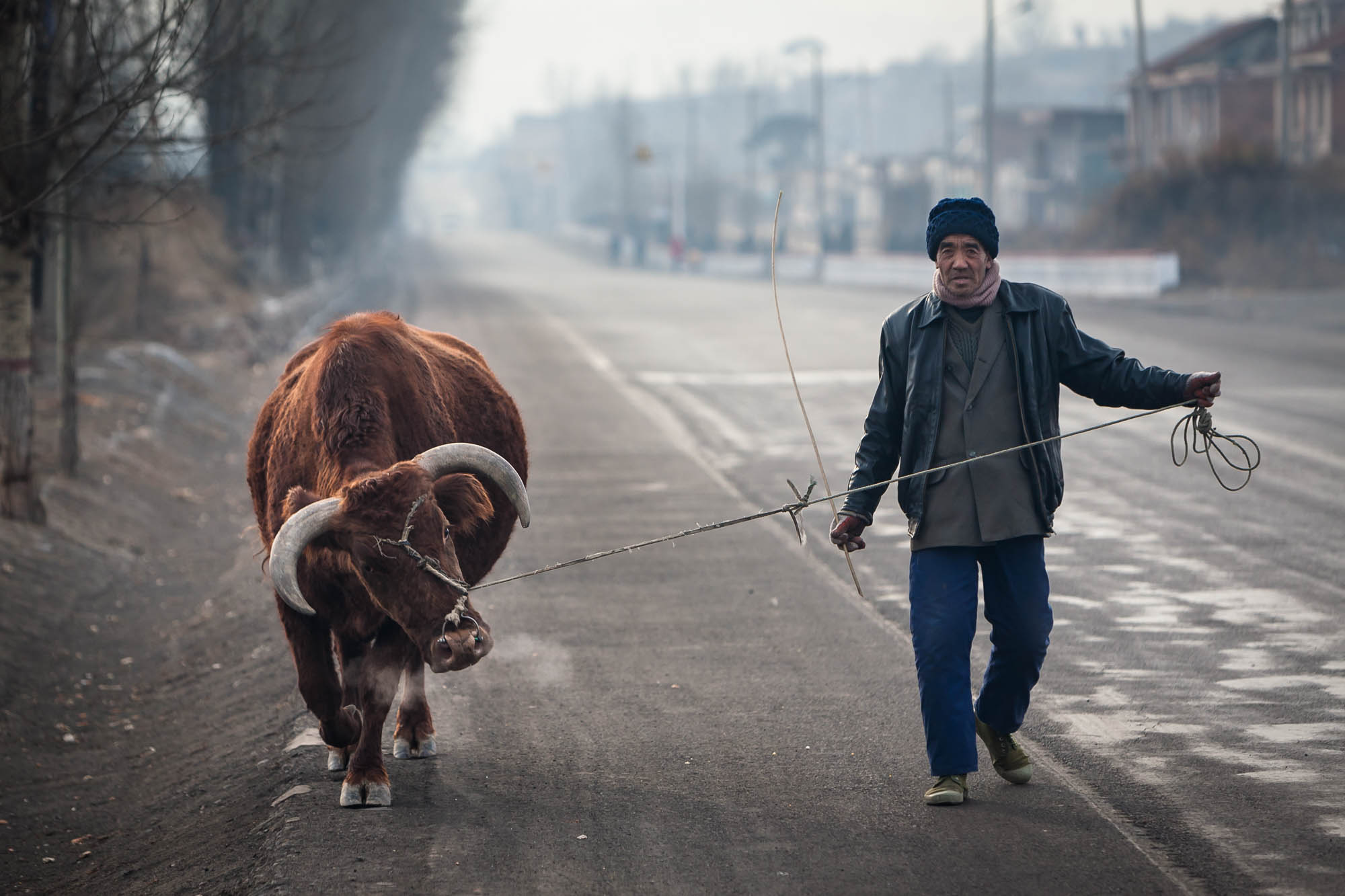 encounter on a country road