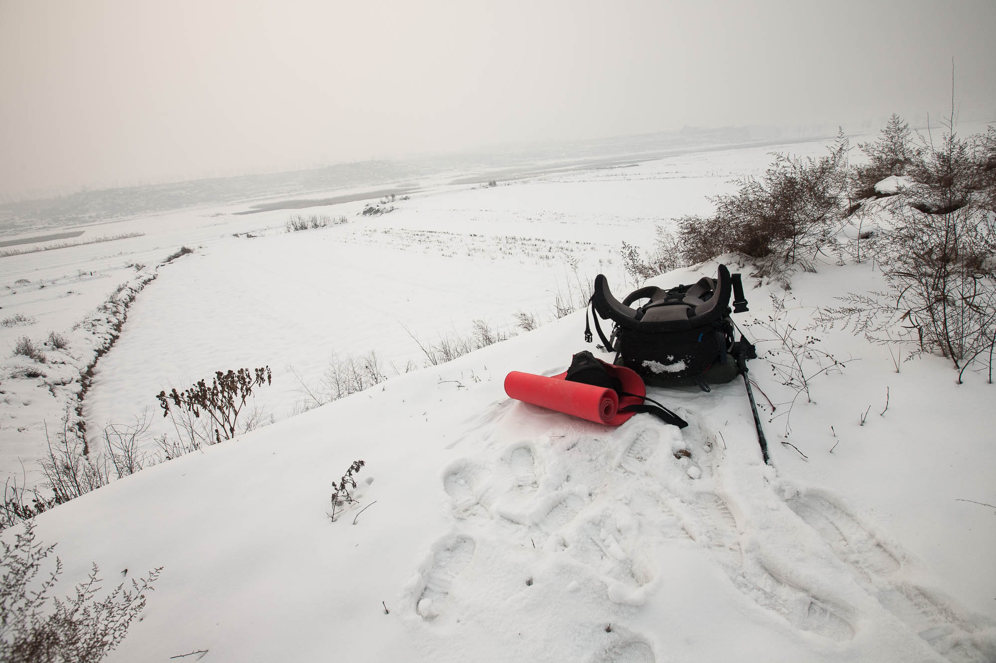 rest in the snow