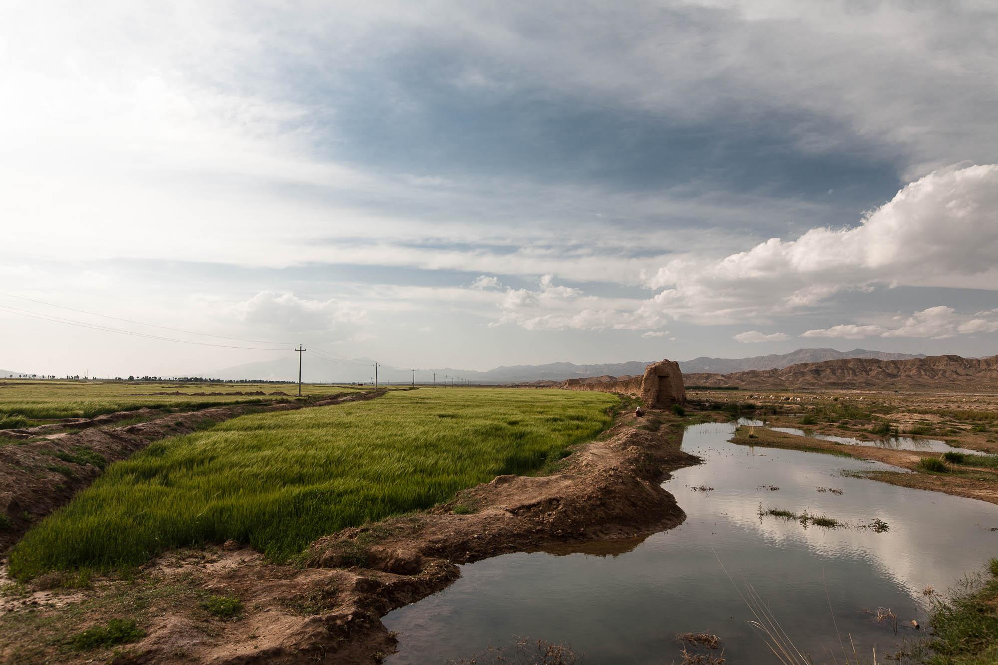 Great Wall amid fields