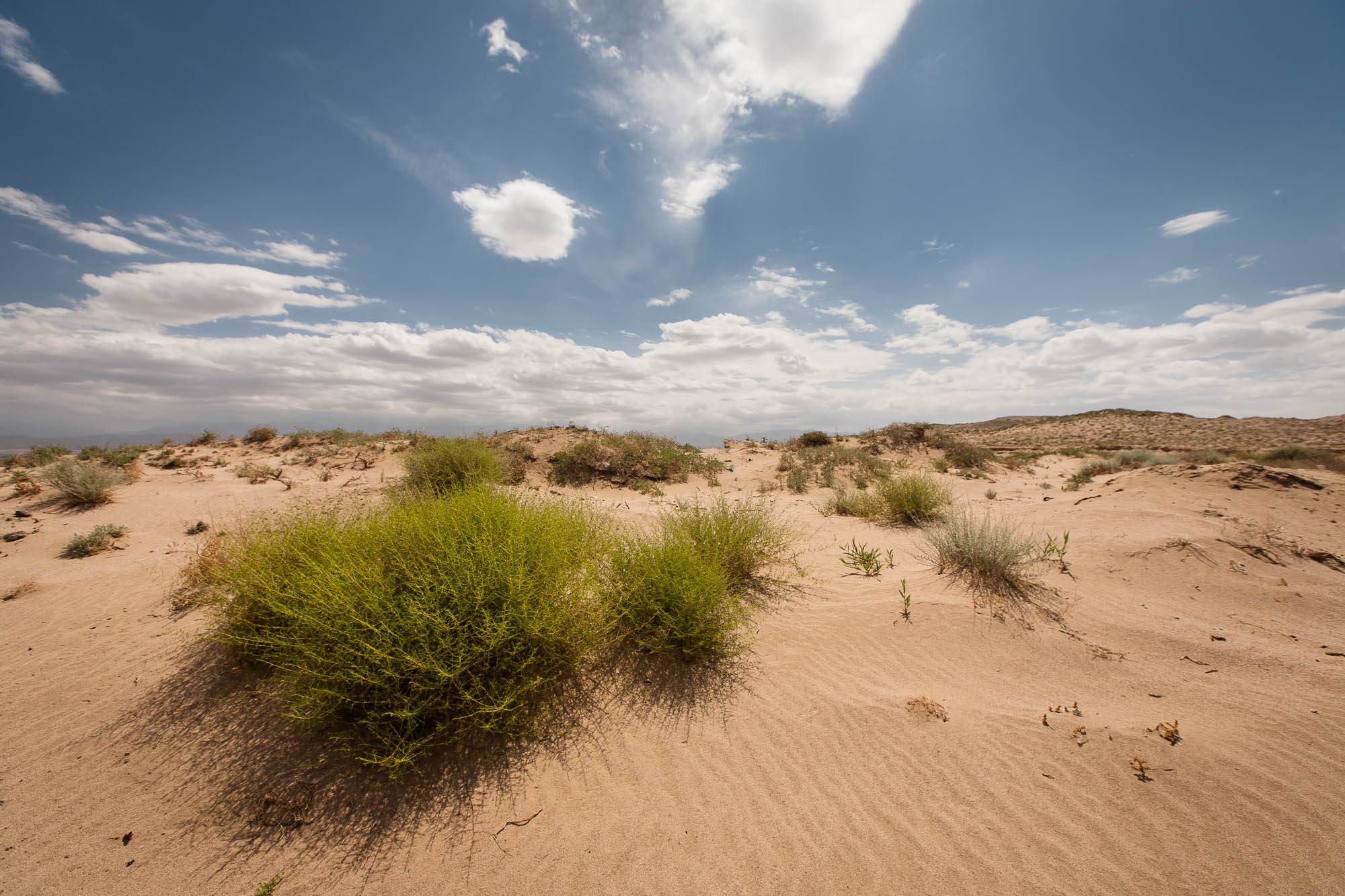small patch of sandy desert