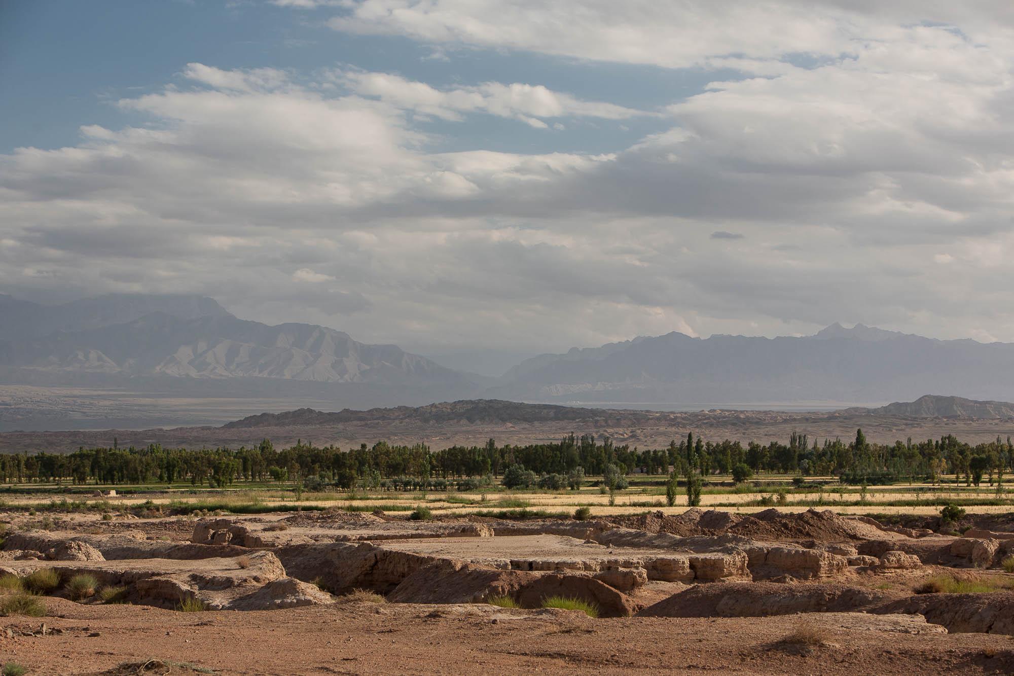 fertile landscape