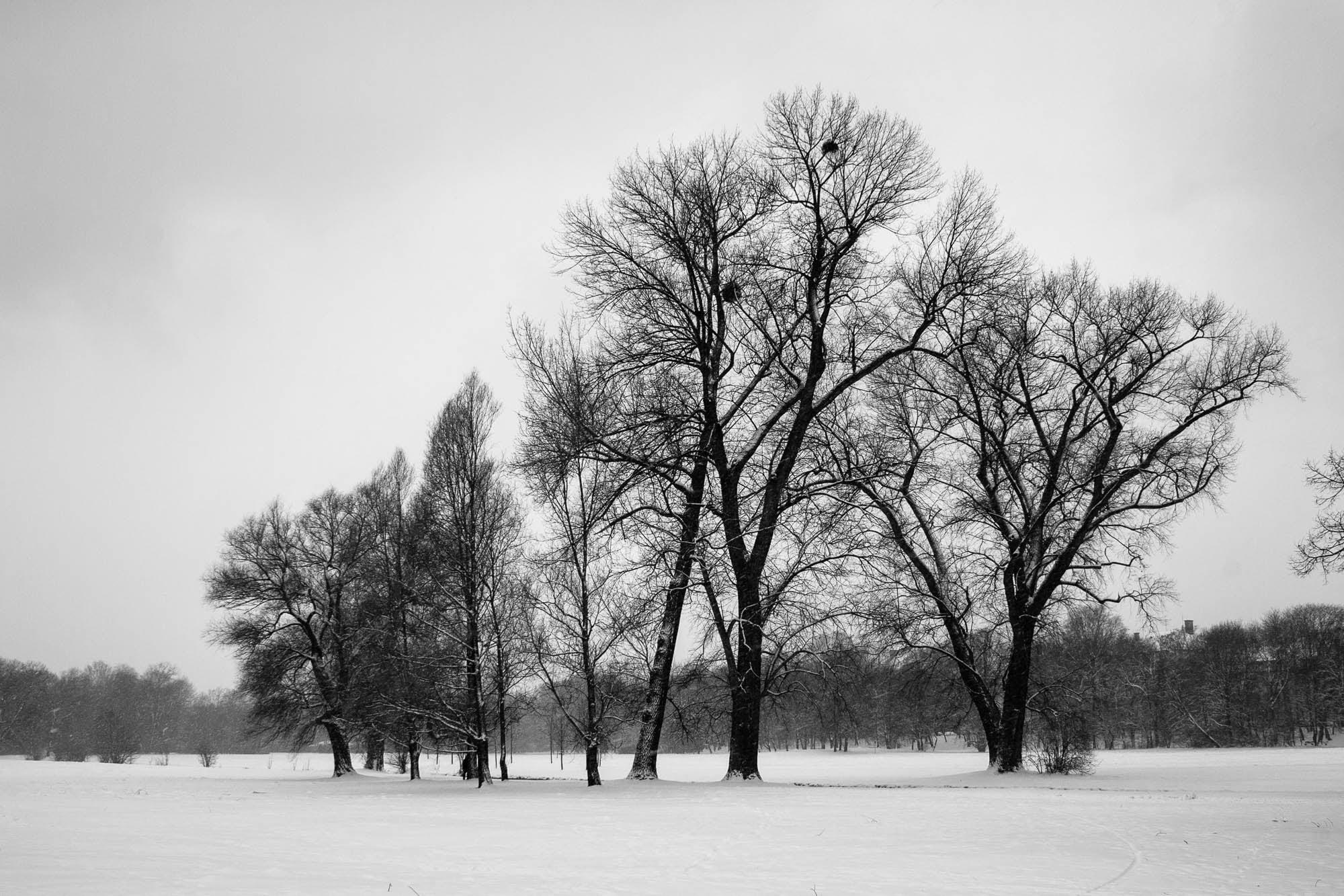 winter in Munich in 2005