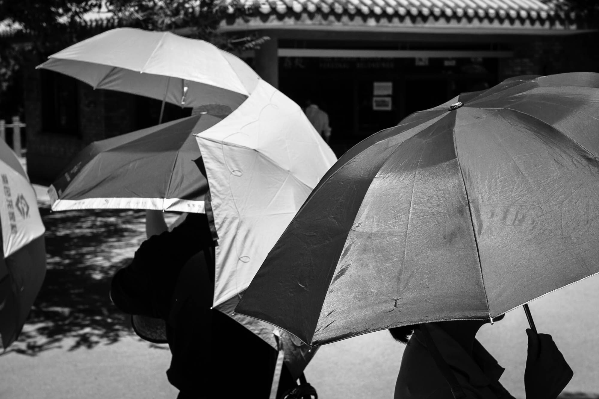 umbrellas in 2006
