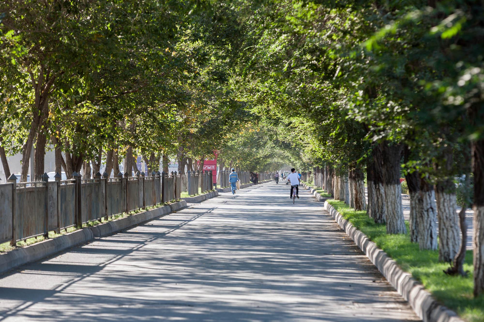 quiet street in Changji