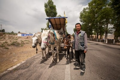 Peng Wenchao stopped his three horses for me on June 11th, 2008