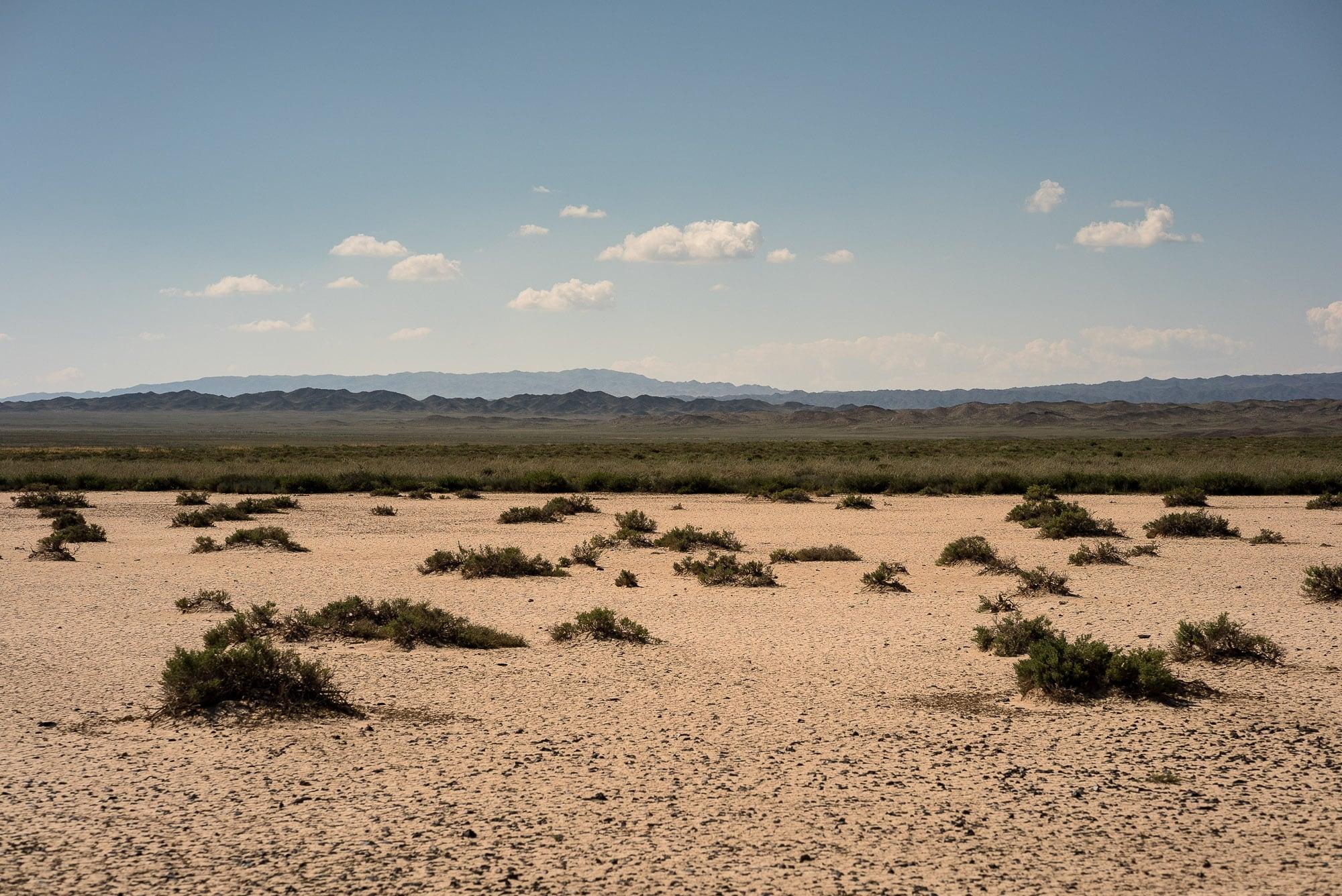desert-like scenery