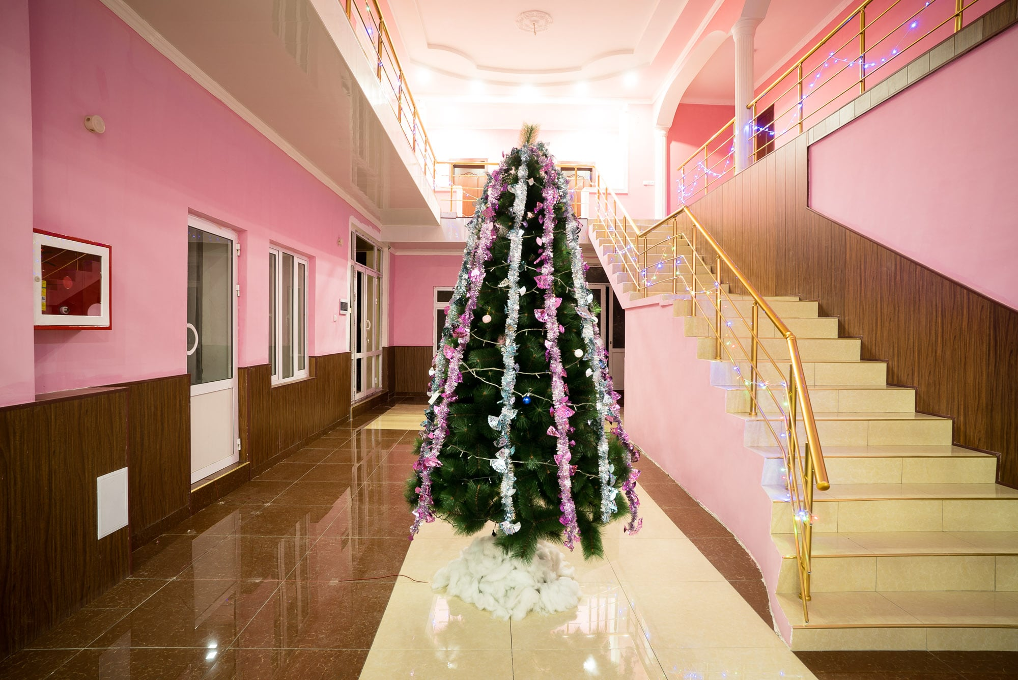 Christmas tree in Gulistan