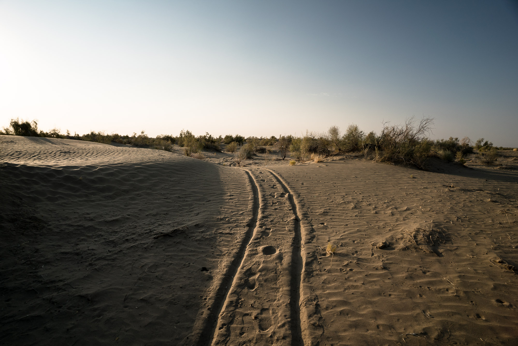 the Caboose's tracks