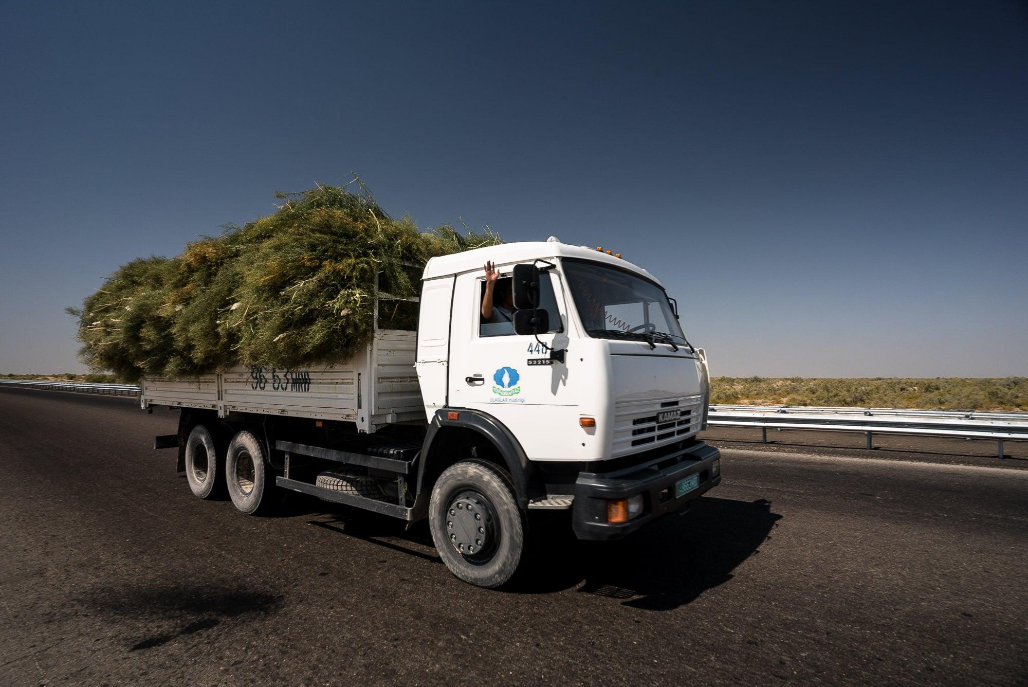 truck saying hi