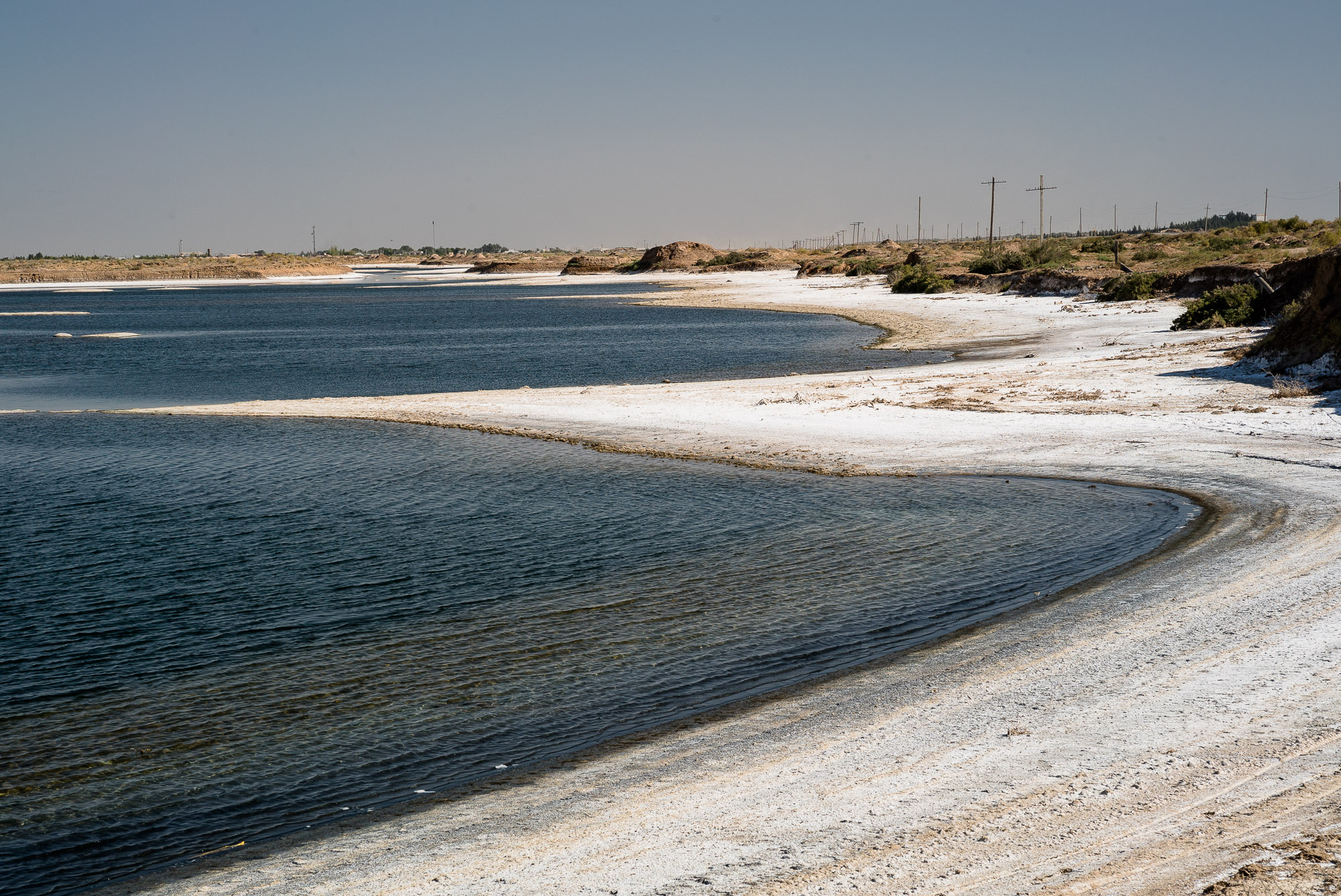 salty shores