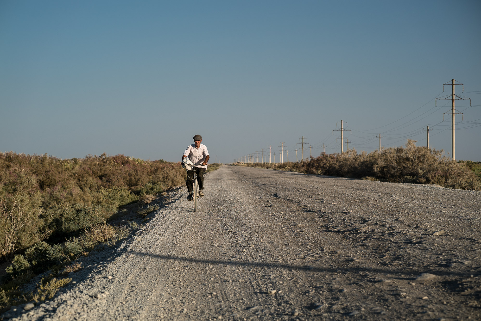 cyclist in the steppe