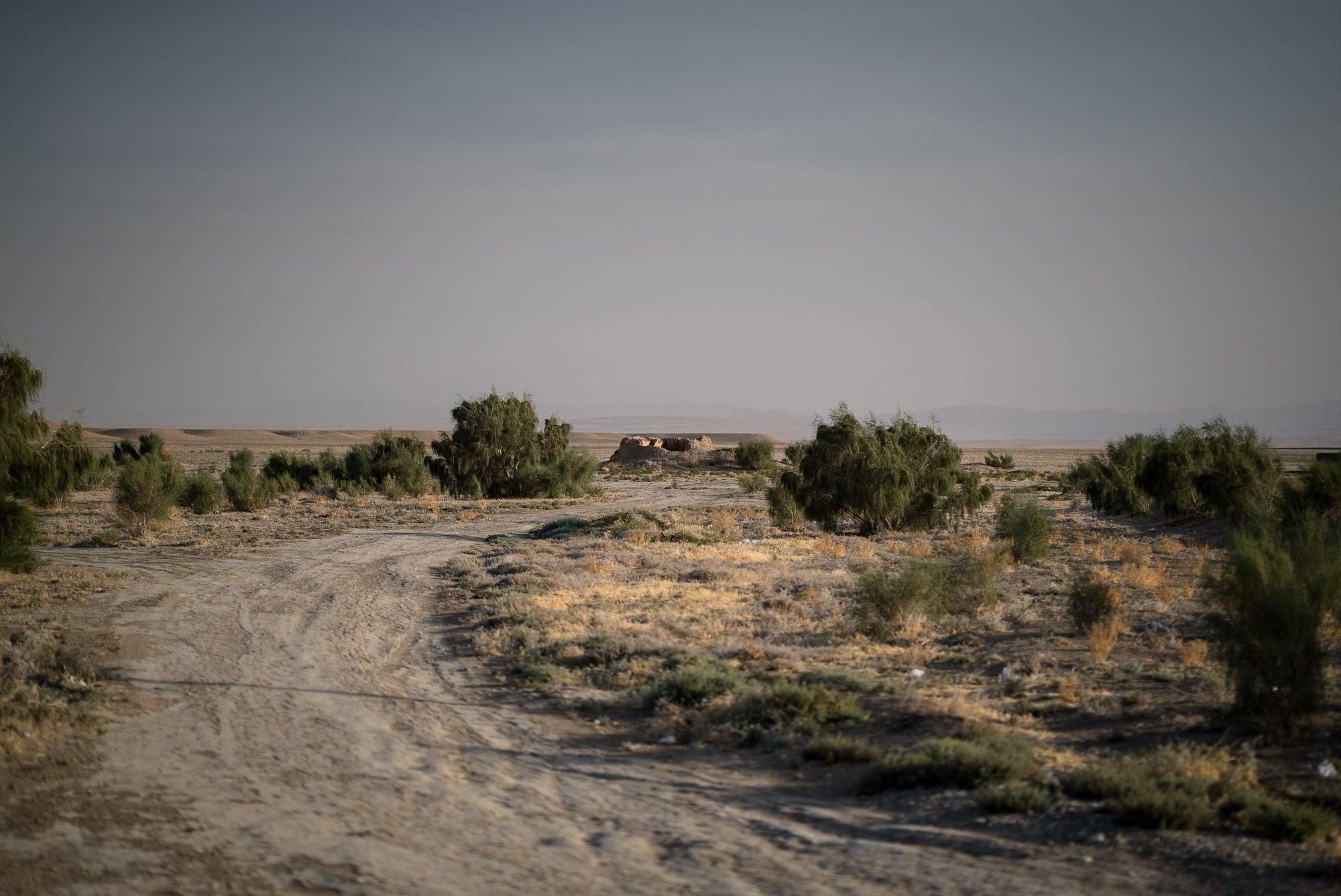 dirt track into the desert