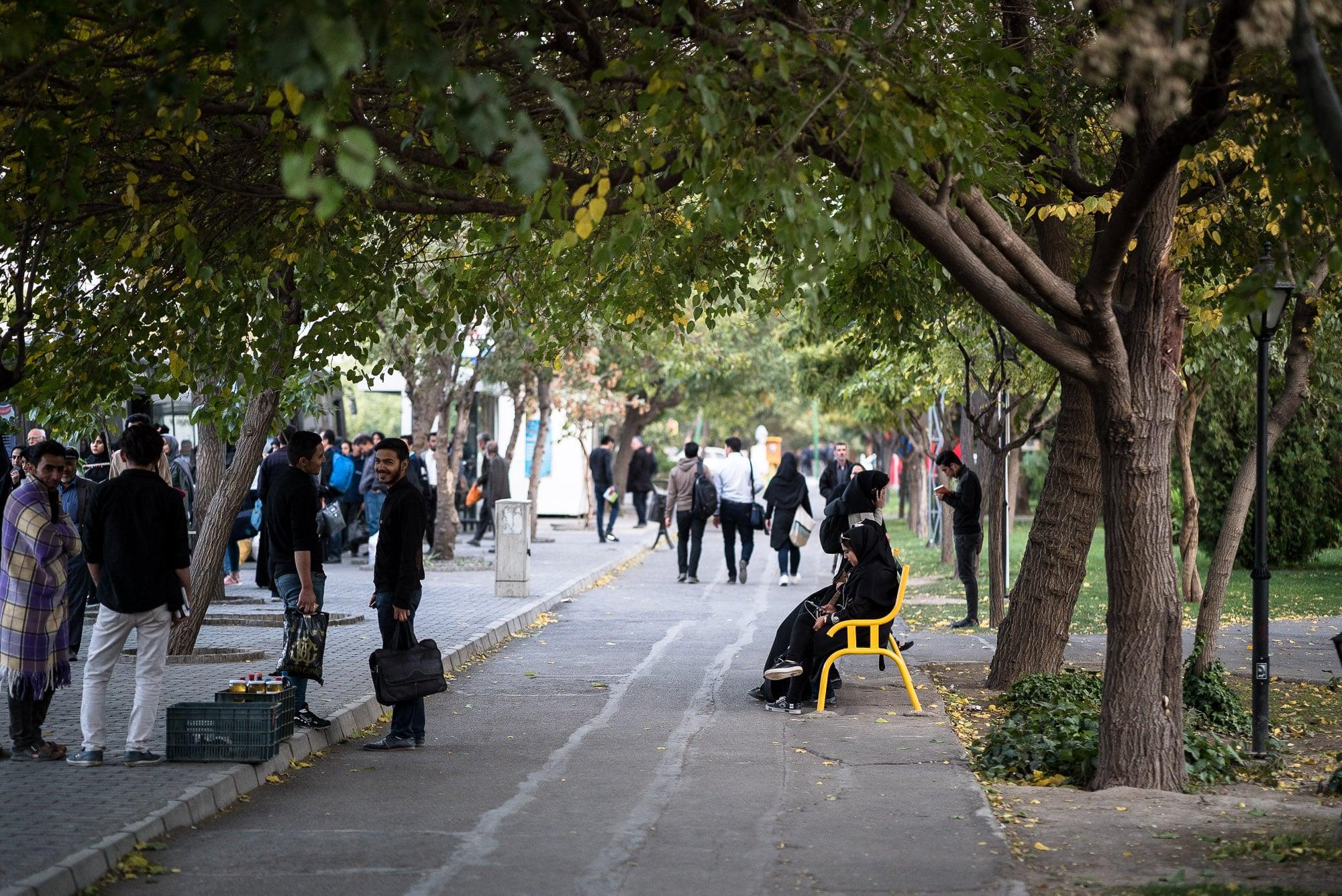 near the university