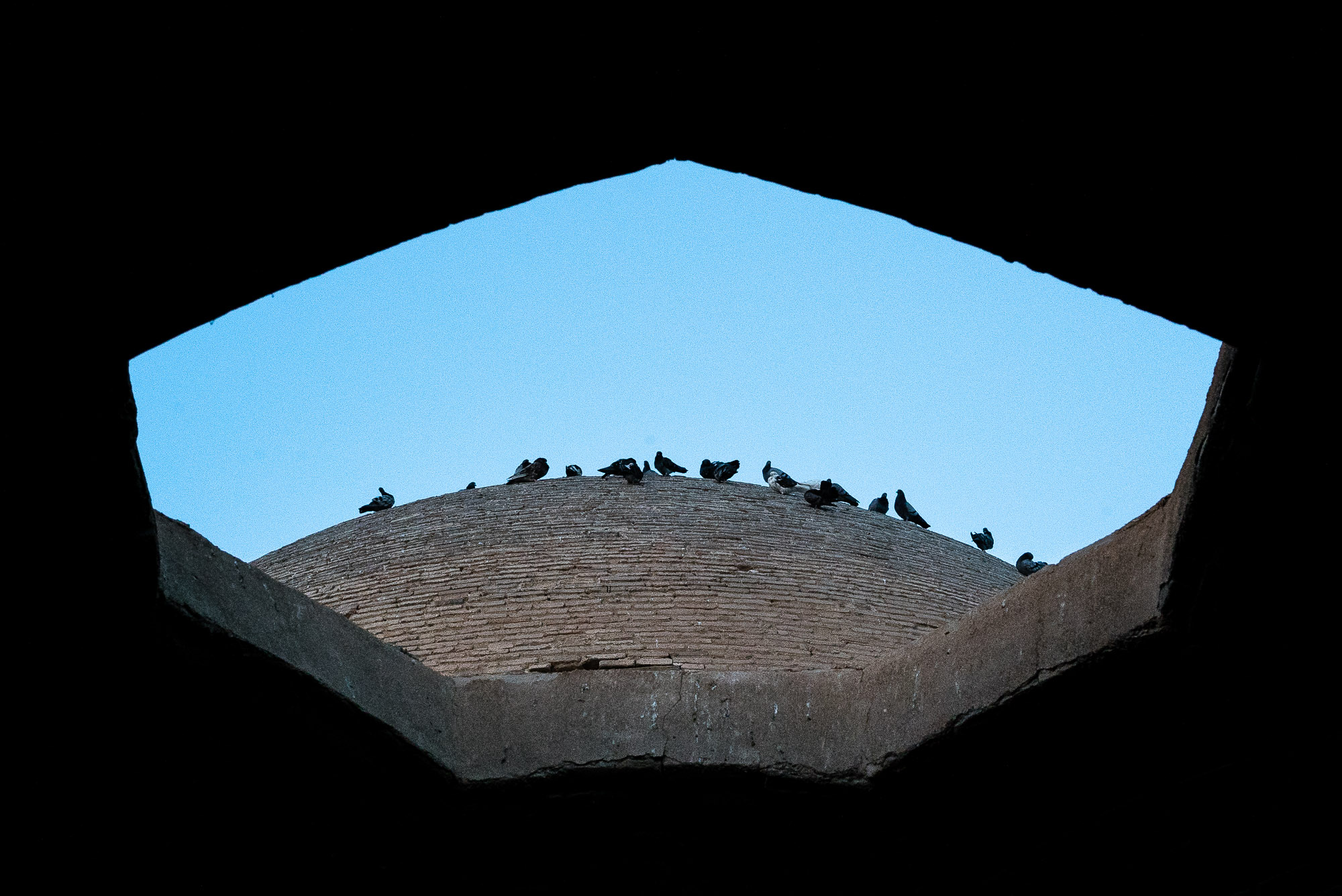 birds on top of Atiq Jameh Mosque