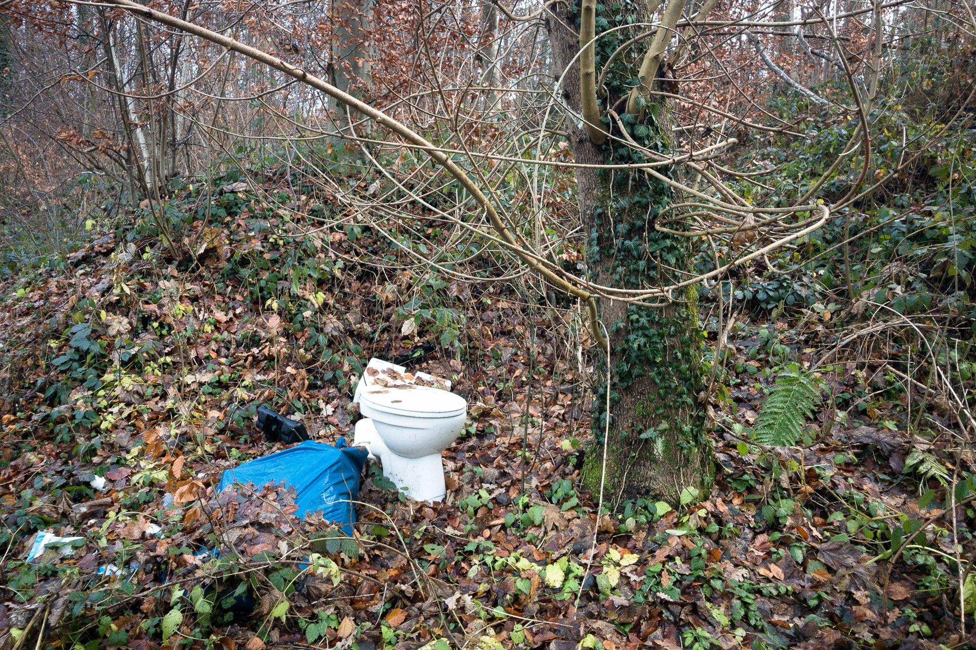 toilet earth