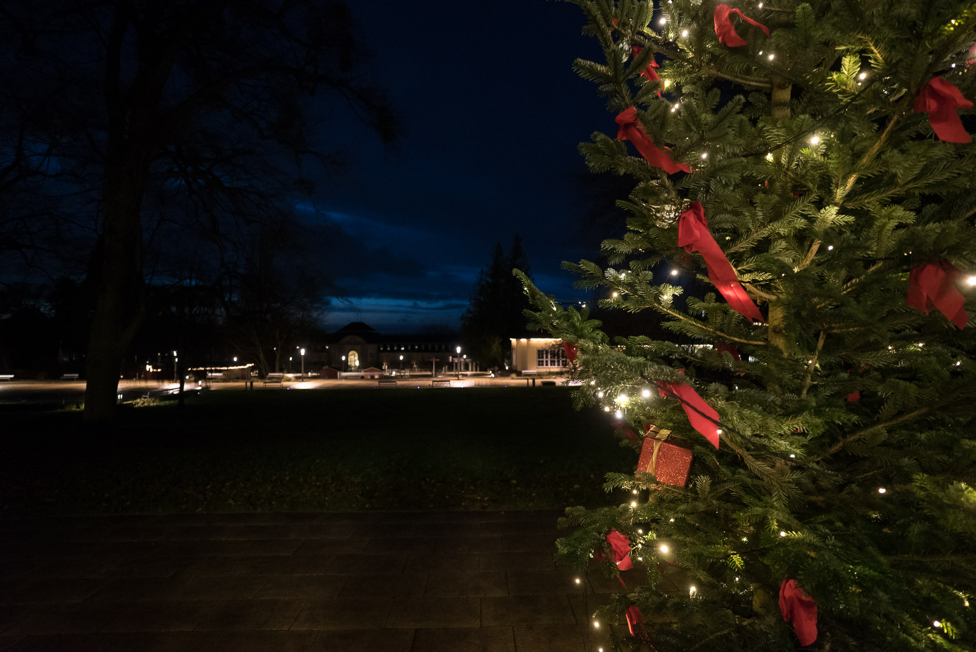 Christmas tree in Bad Nenndorf