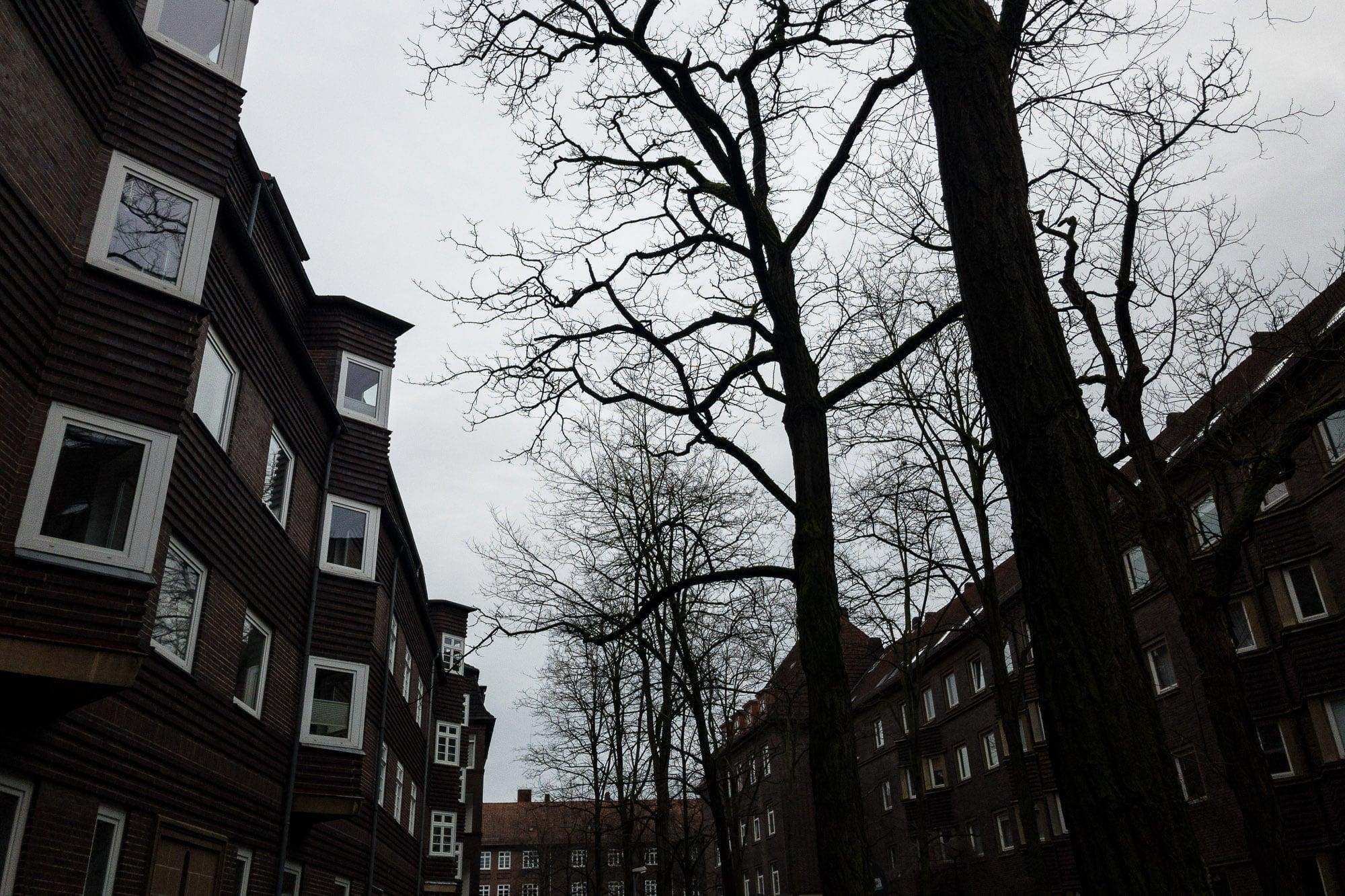 in Hanover