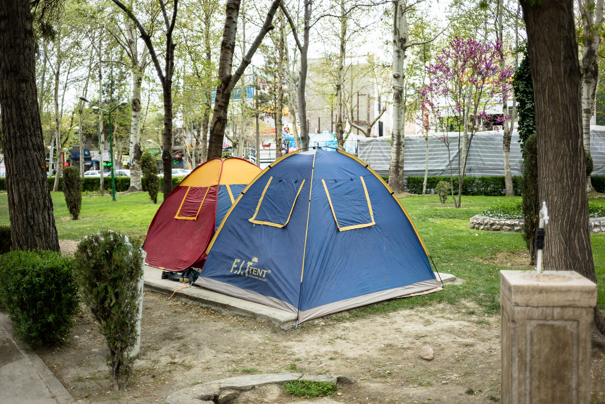 tents in a park