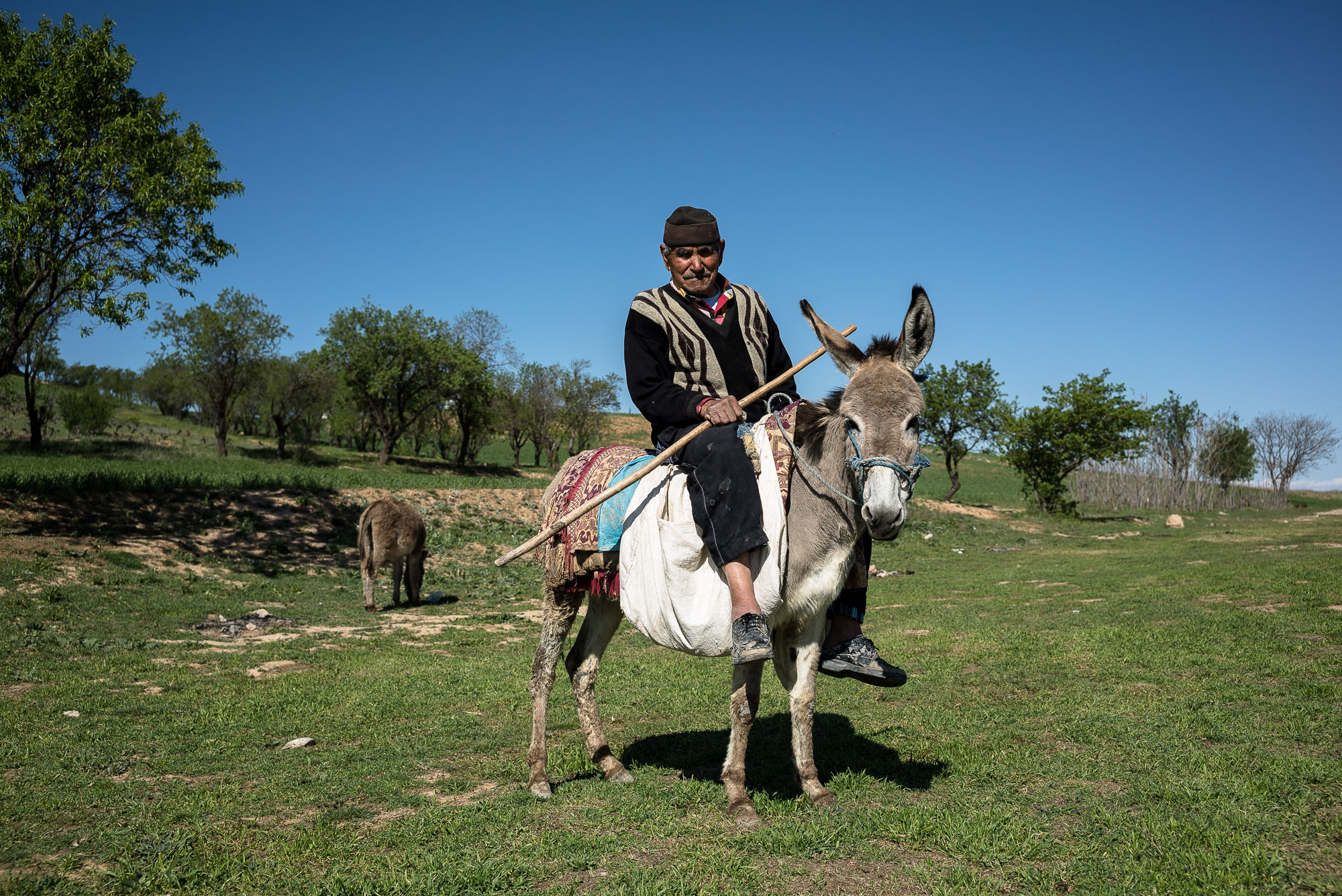 dude on donkey