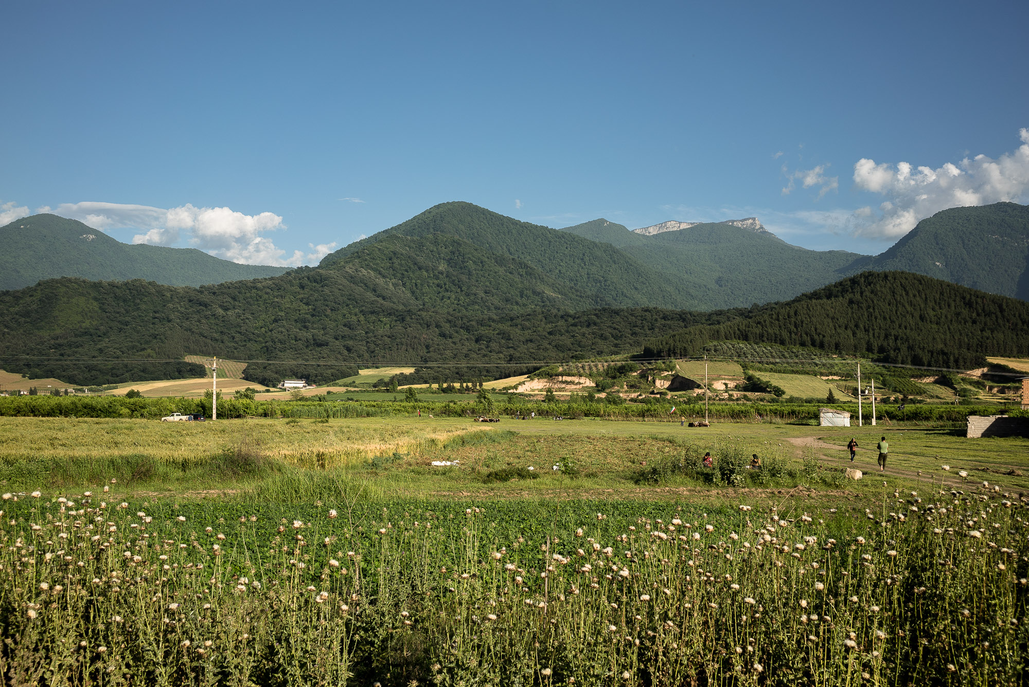green Golestan