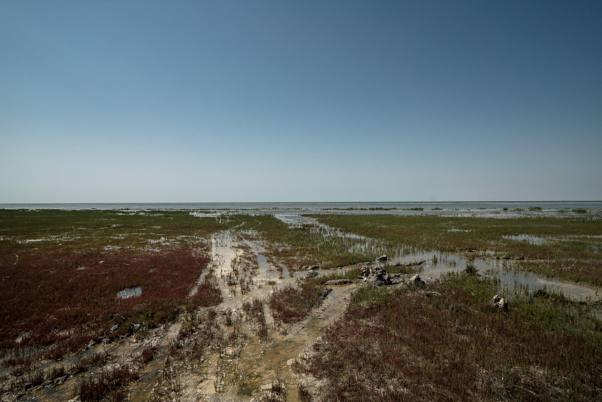 Gulf Of Gorgan