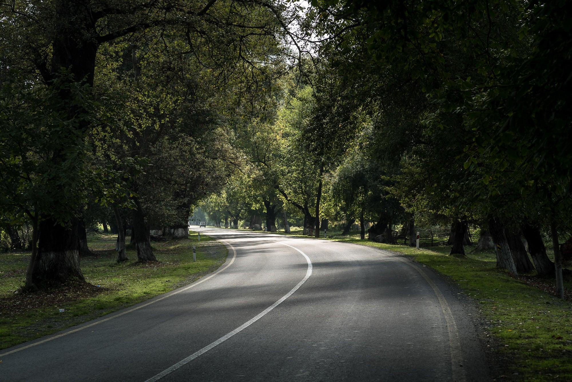 road near Nij