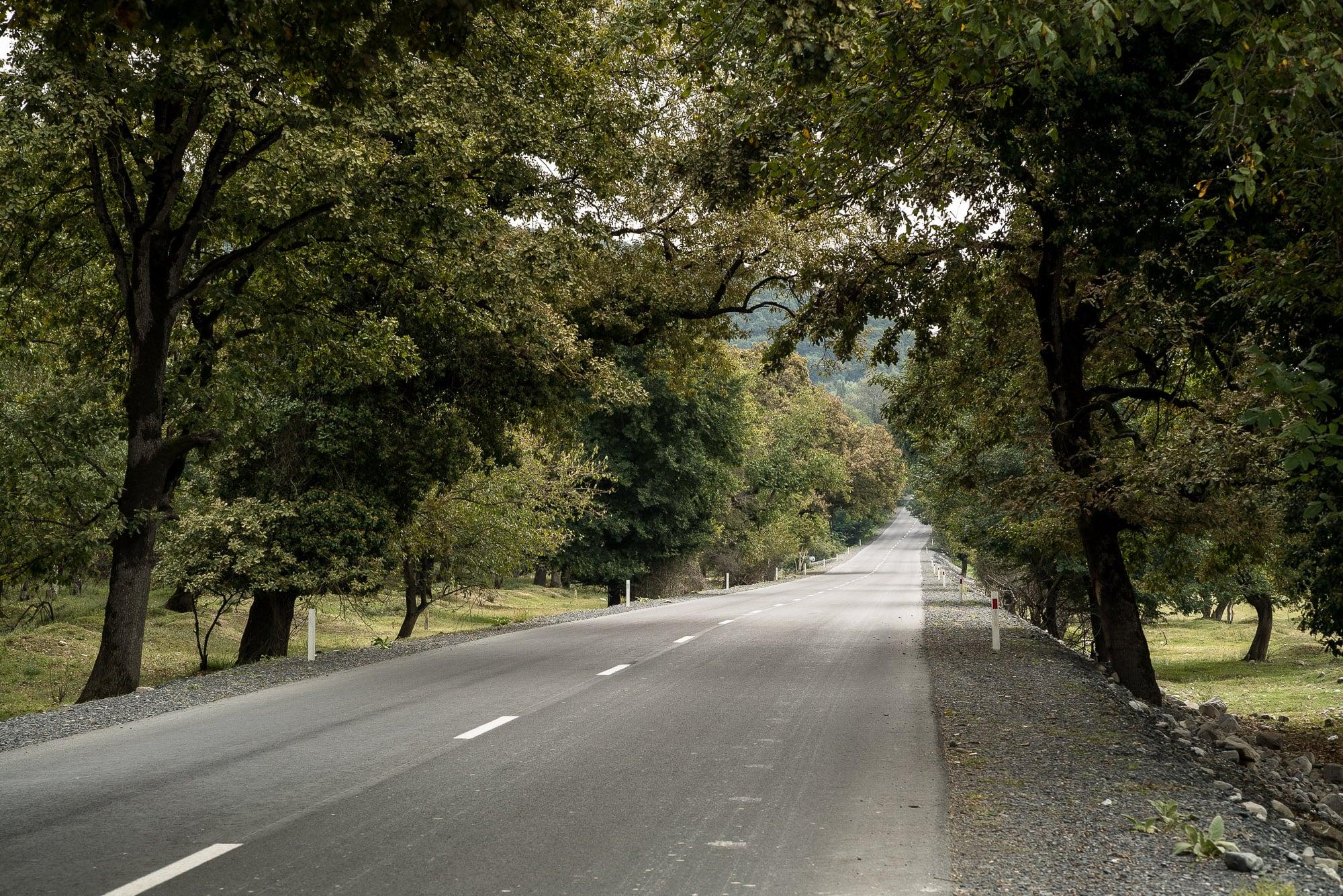 road near Qakh