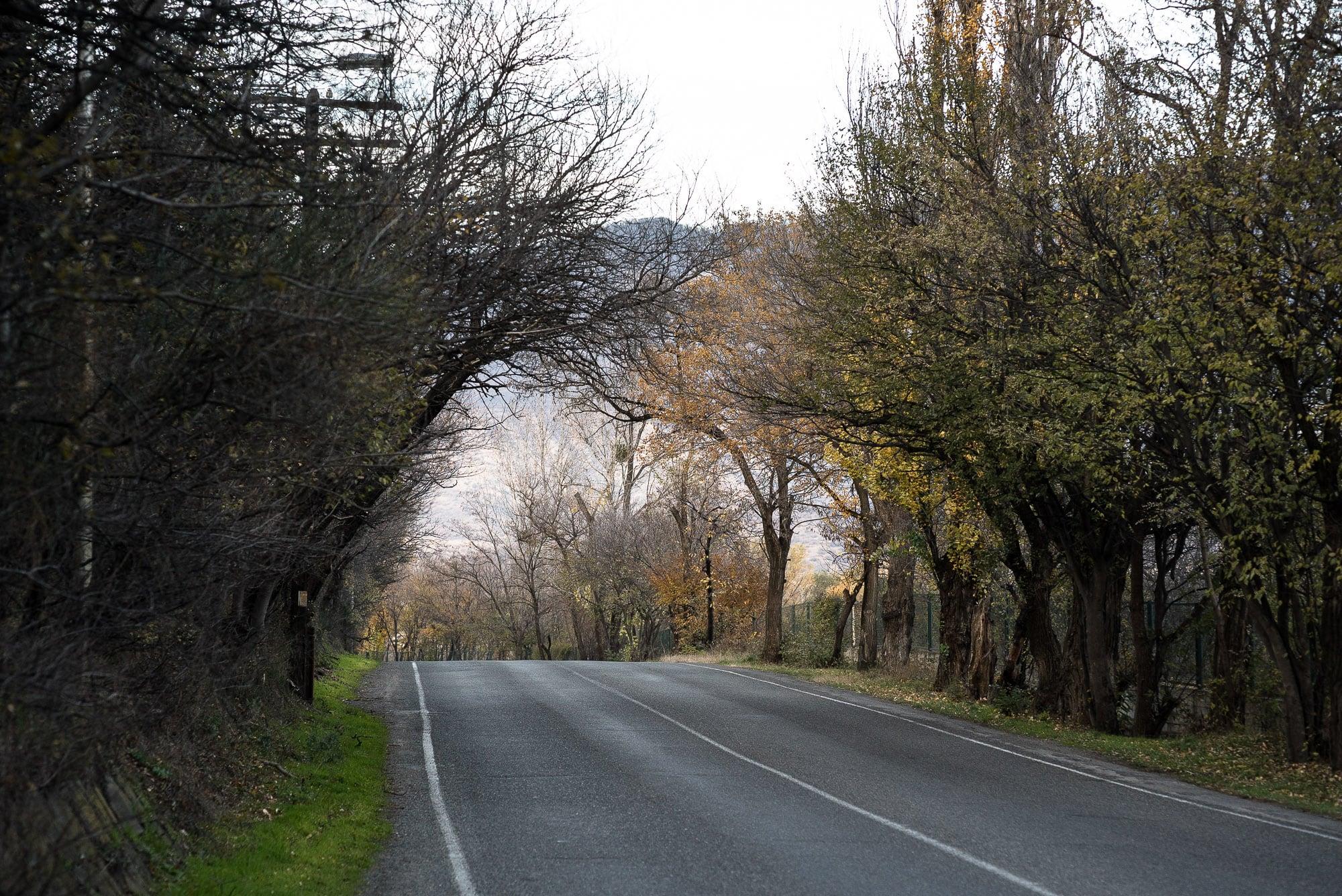 road to Mtskheta