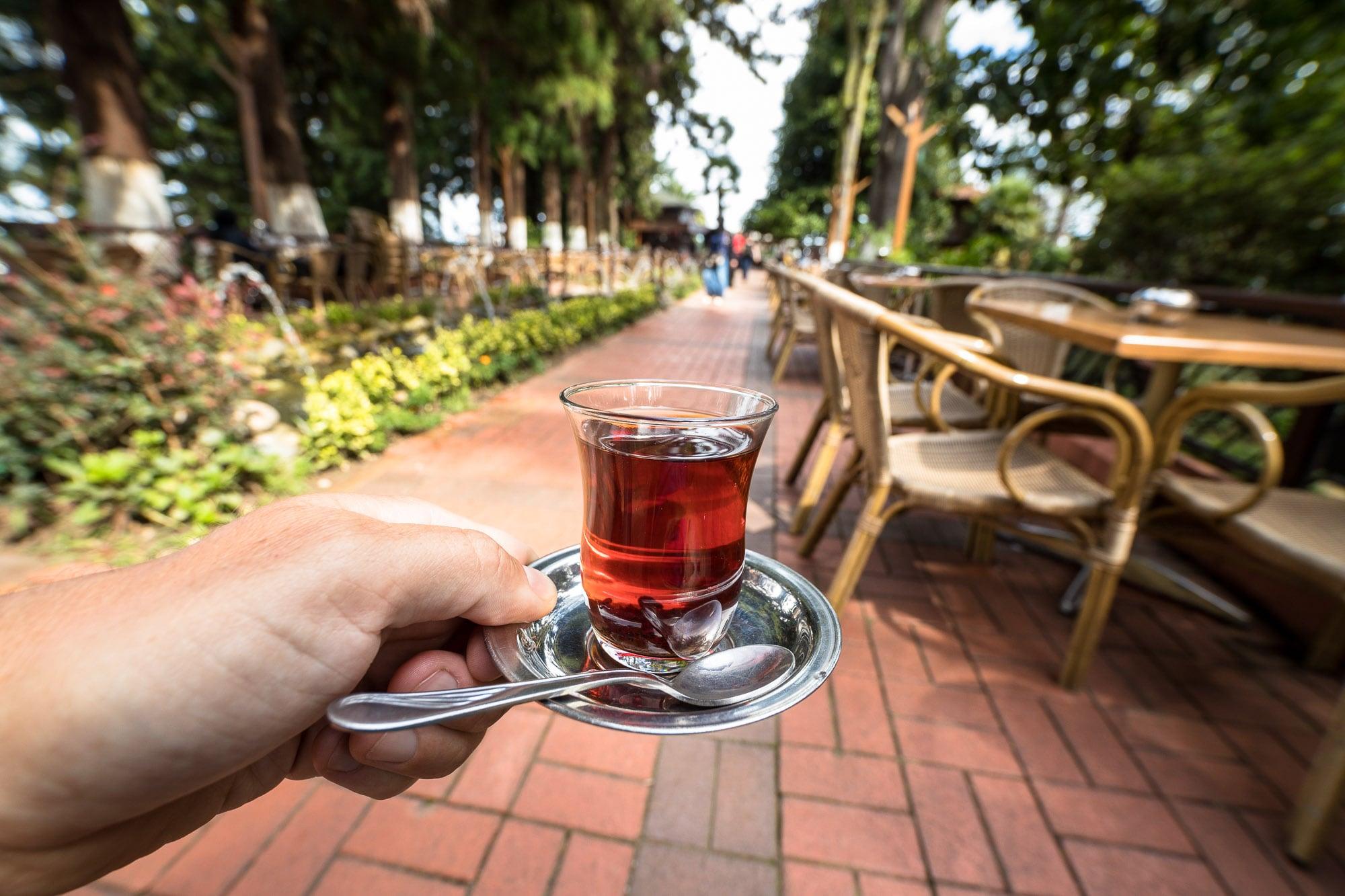 Ziraat Tea Garden