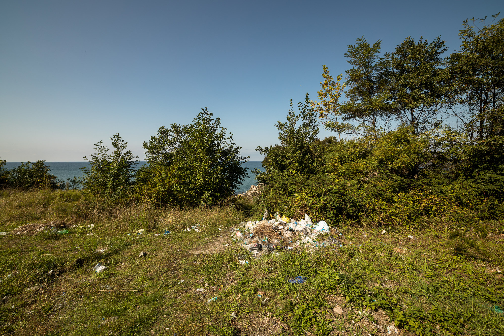 seaside trash