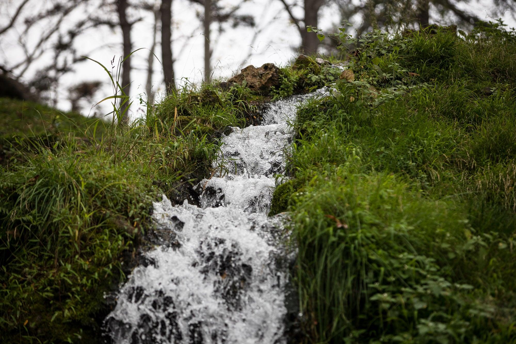 water of Giresun Castle