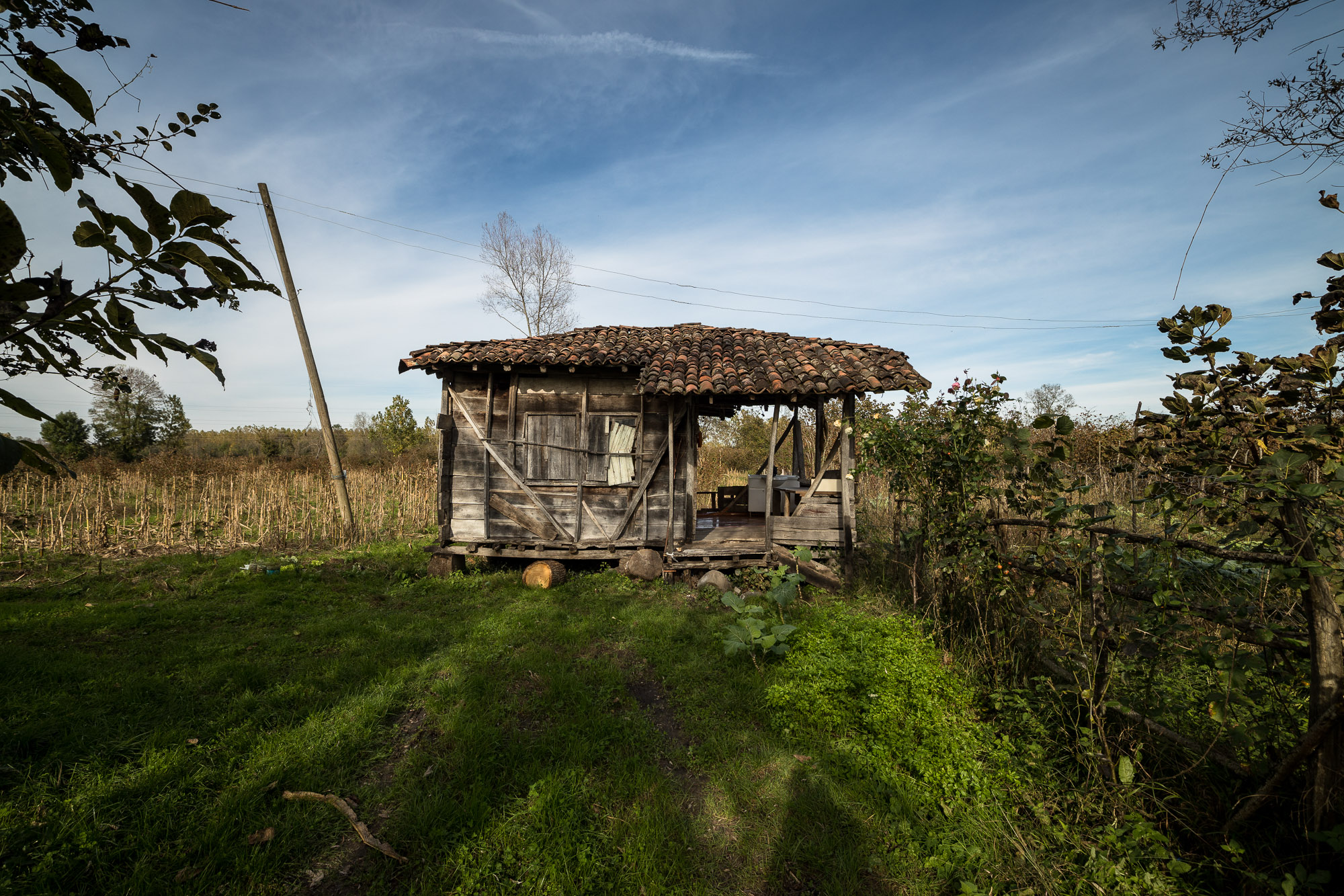 wood hut near Terme