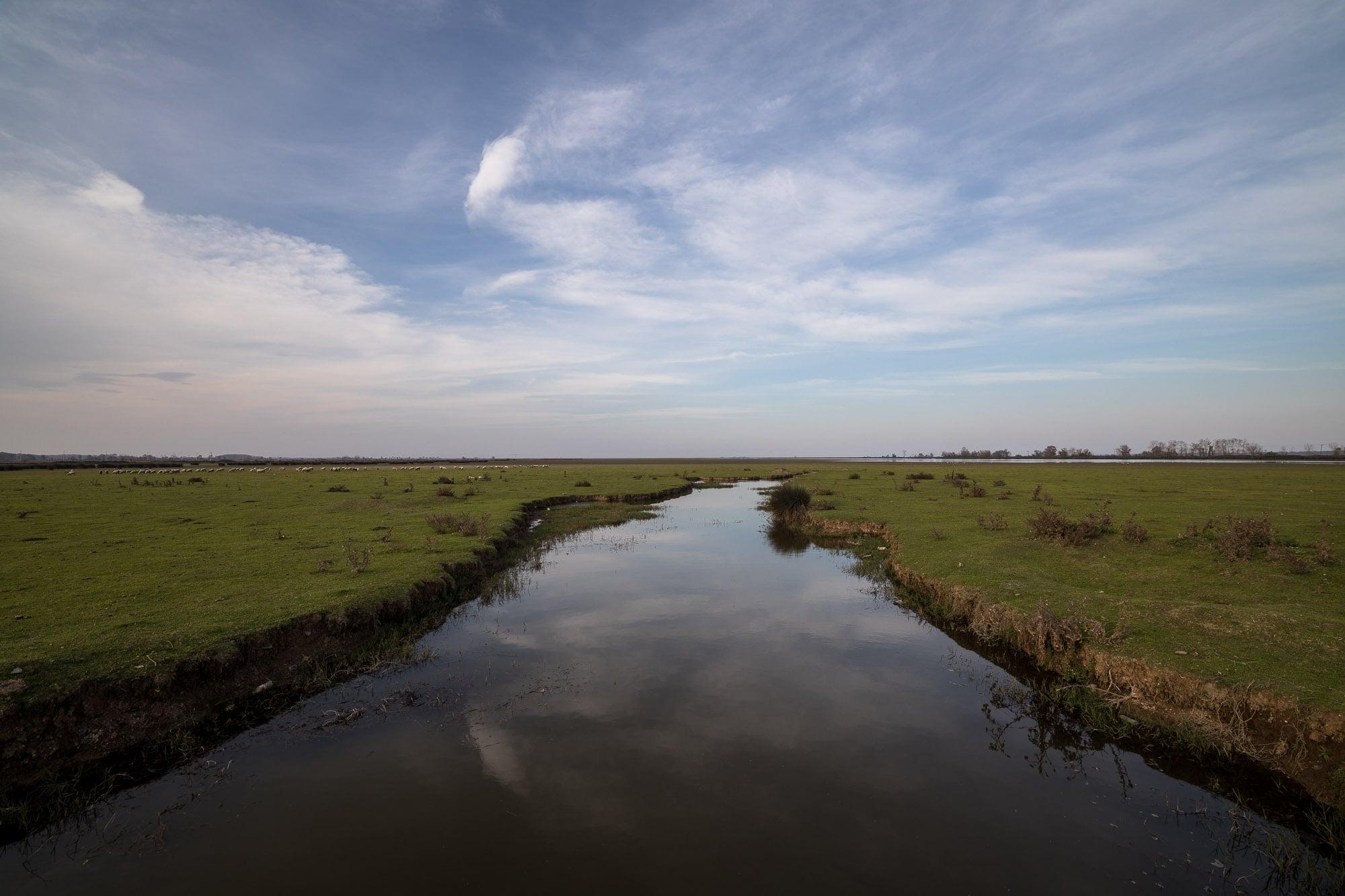 marshland near Yörükler