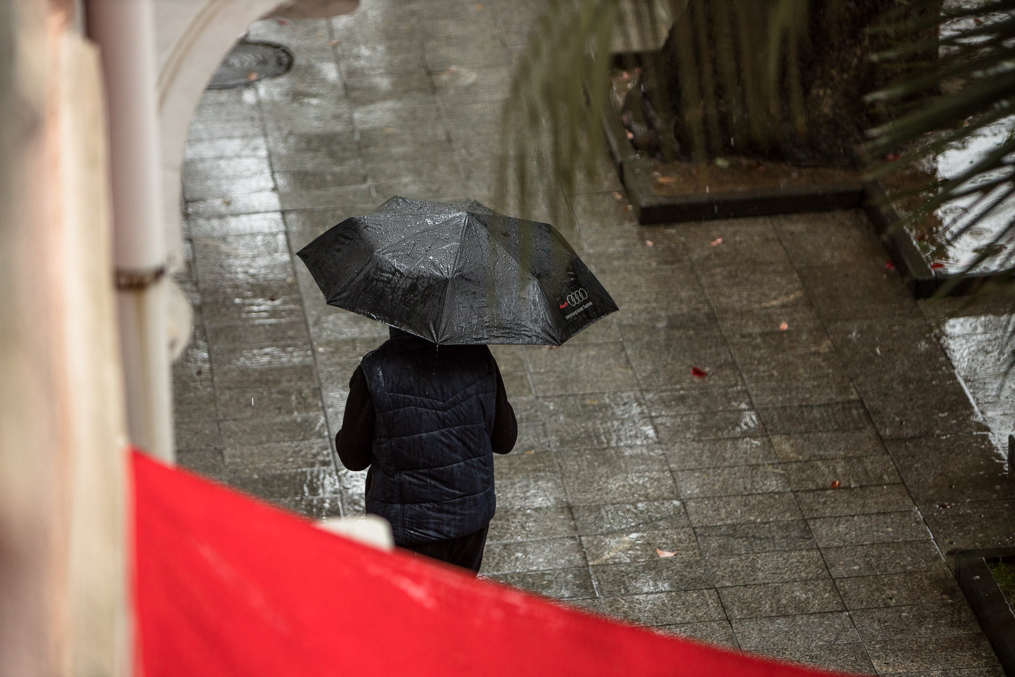 umbrella in Batumi