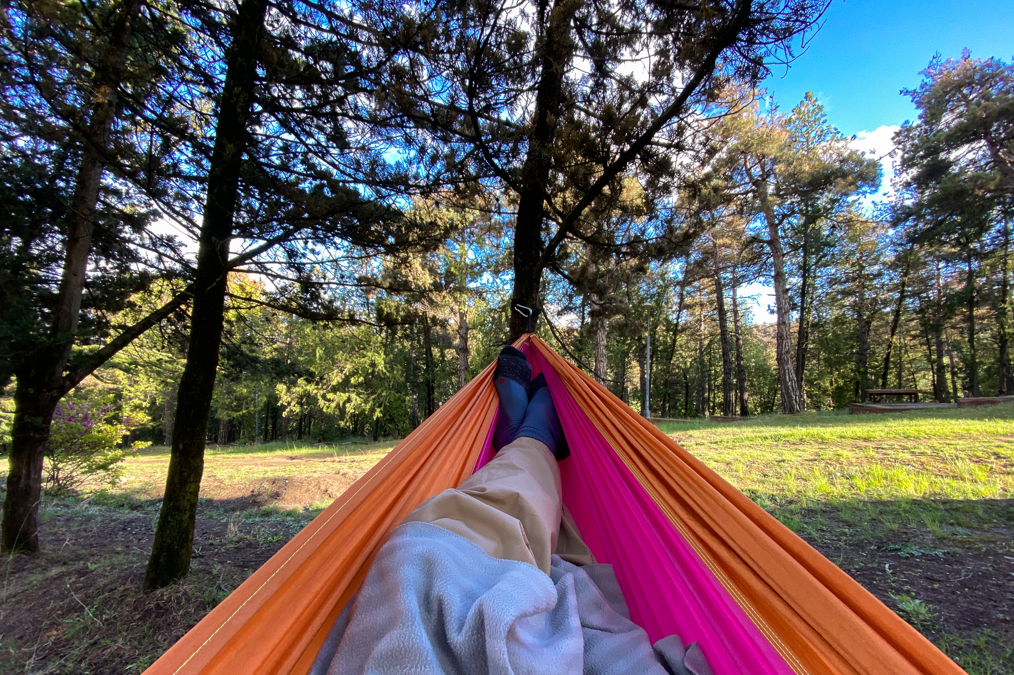 hammock in the park